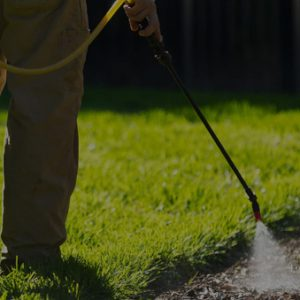 pro lawn western oklahoma mowing spraying landscaping